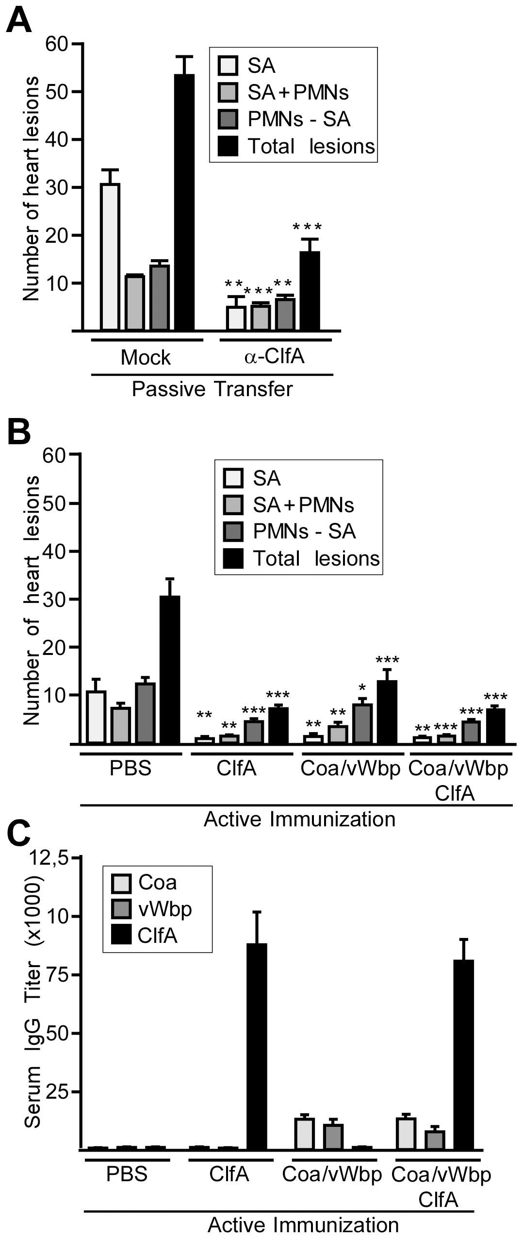 Neutralization of coagulases and ClfA prevents staphylococcal agglutination in heart tissues of septic mice.