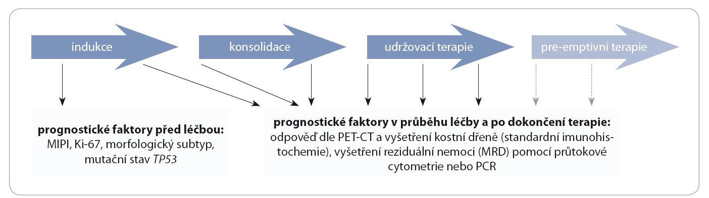 Prognostické faktory u pacientů s MCL před léčbou, v průběhu léčby a po jejím dokončení.