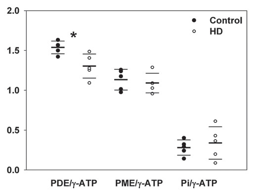 Fig. 3. Distribution of the ratios PDE/γ-ATP, PME/γ-ATP and Pi/γ-ATP in the group of TgHD minipigs (°) and control wild type (nontransgenic) siblings (•).