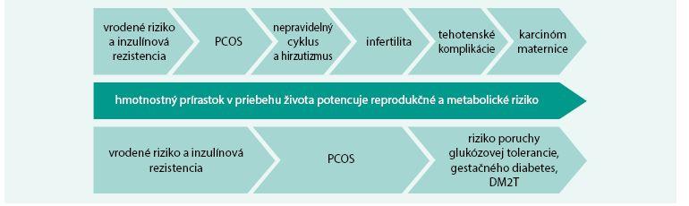 Schéma. Reprodukčné a metabolické črty PCOS potencované hmotnosťou v priebehu života ženy.