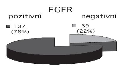 Zastoupení exprese EGFR.