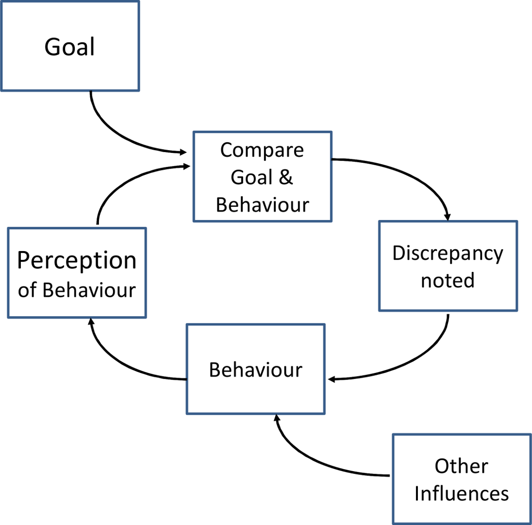 "Example of the control theory model used for coding interventions in a review of audit and feedback studies by Gardner et al. <em class=""ref"">[16]</em>."