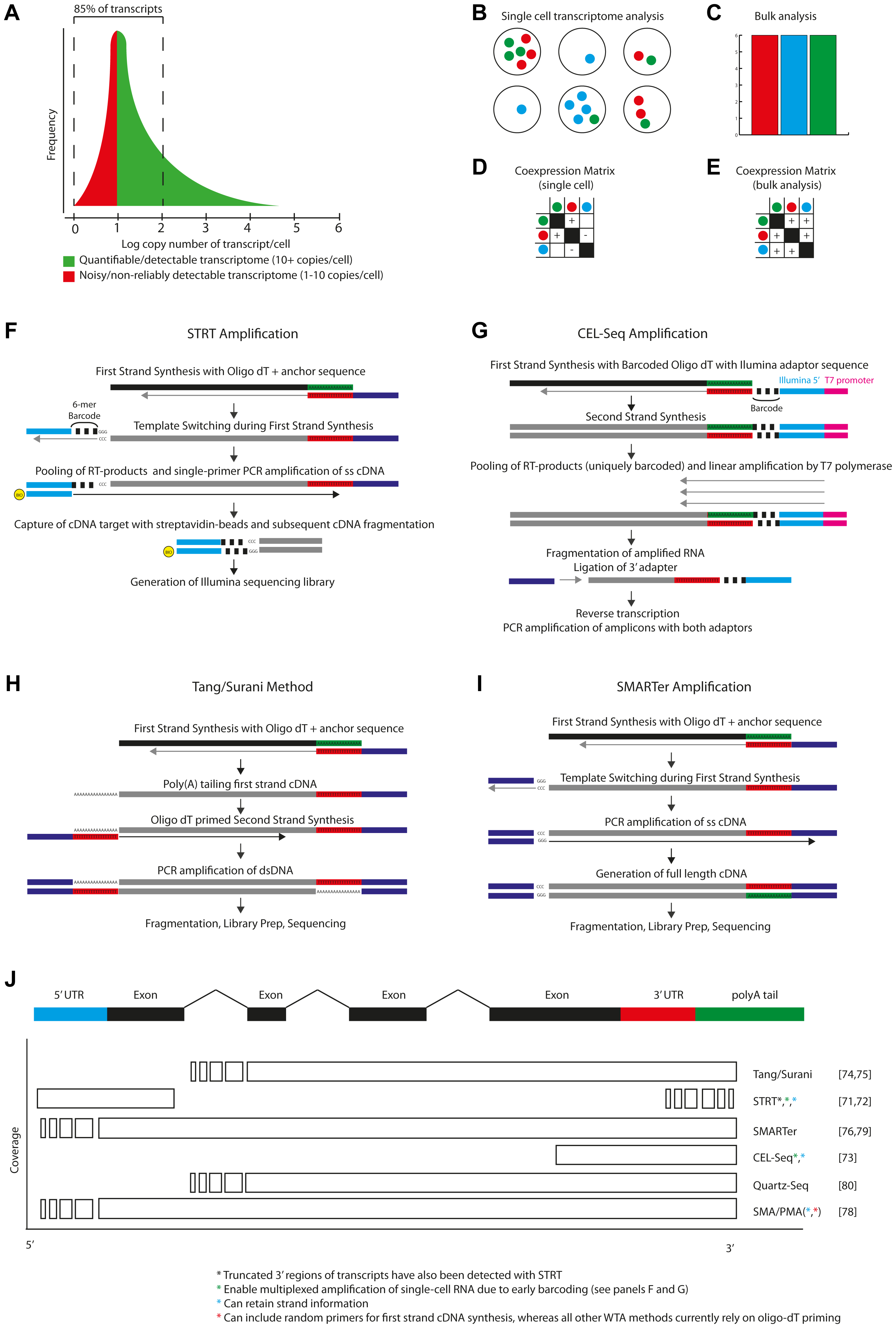 Single-cell transcriptomics.