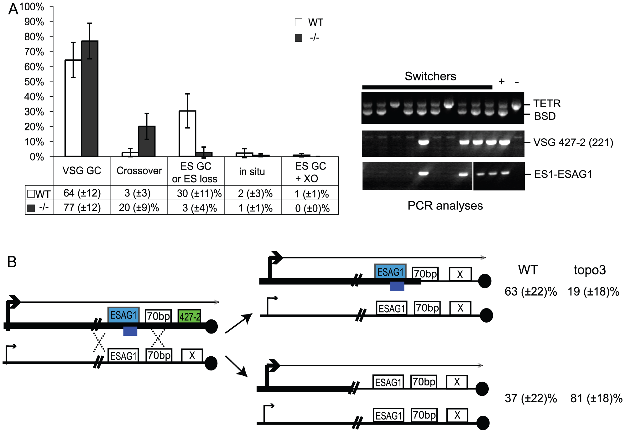 Analyses of switched variants.