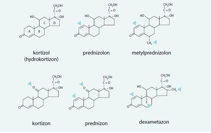 Strukturní vzorce základních syntetických glukokortikoidů používaných k systémové kortikoterapii