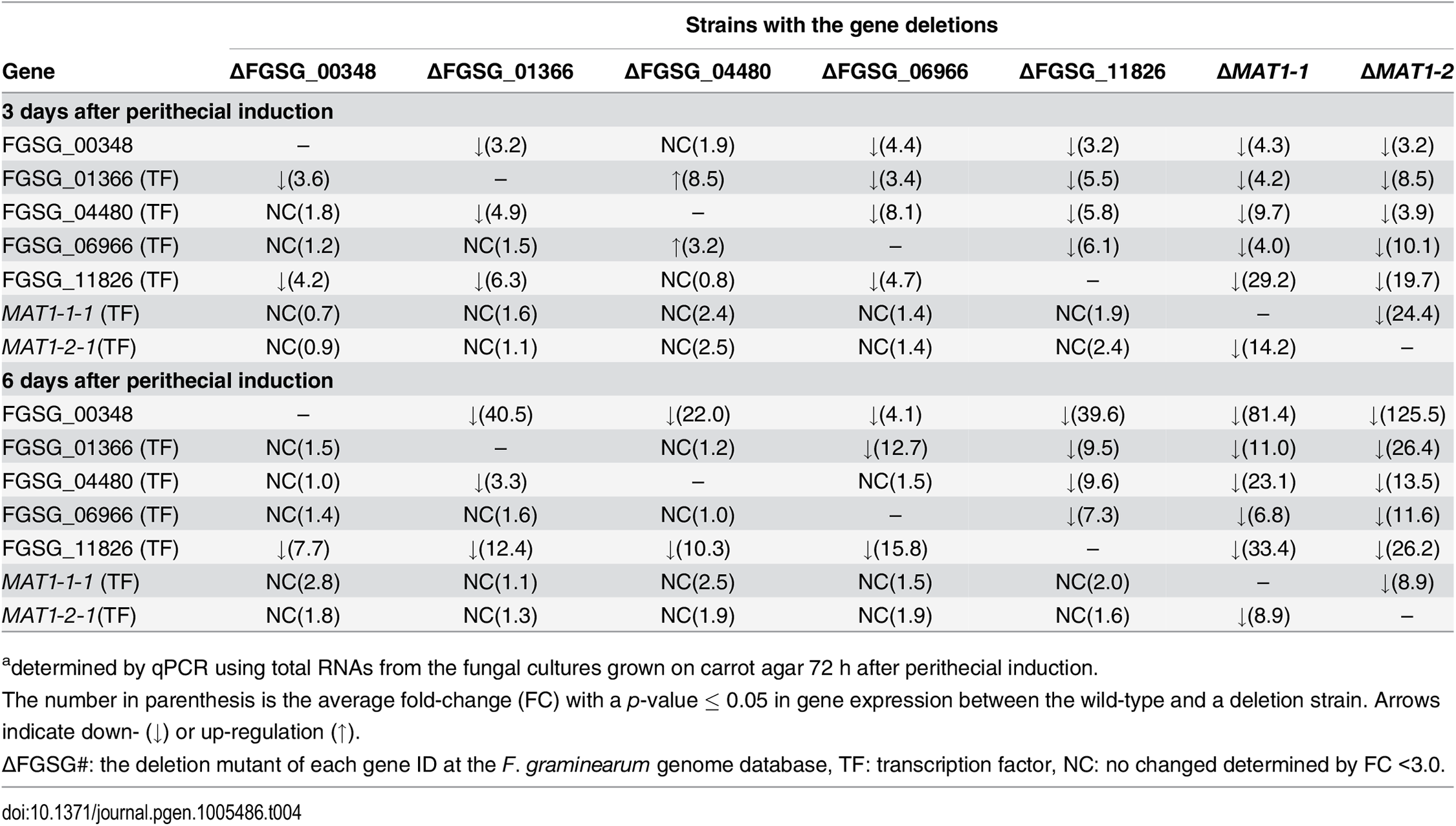 Expressiona of sexual-specific MAT-target regulator genes in the <i>F</i>. <i>graminearum</i> strains with the corresponding gene deletions.