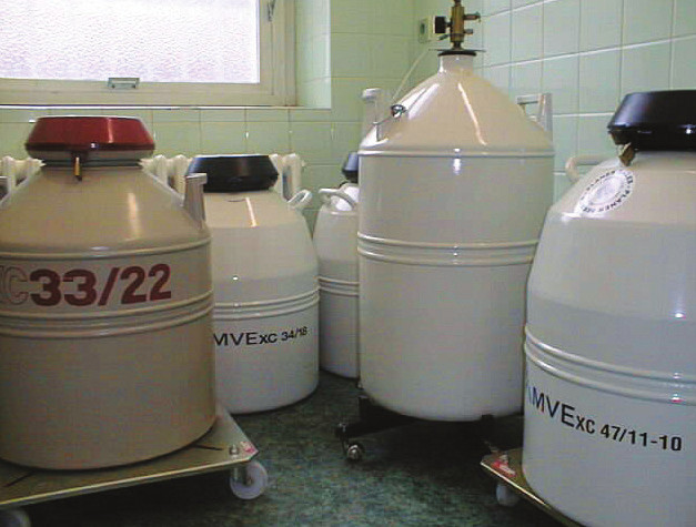 Skladovací kontejnery s tekutým dusíkem.