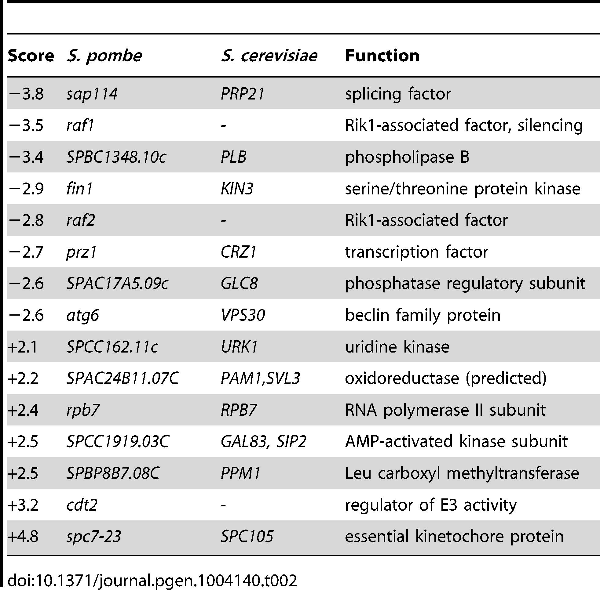 Quantitative epistatic miniarray profiling for <i>bag102</i>Δ.