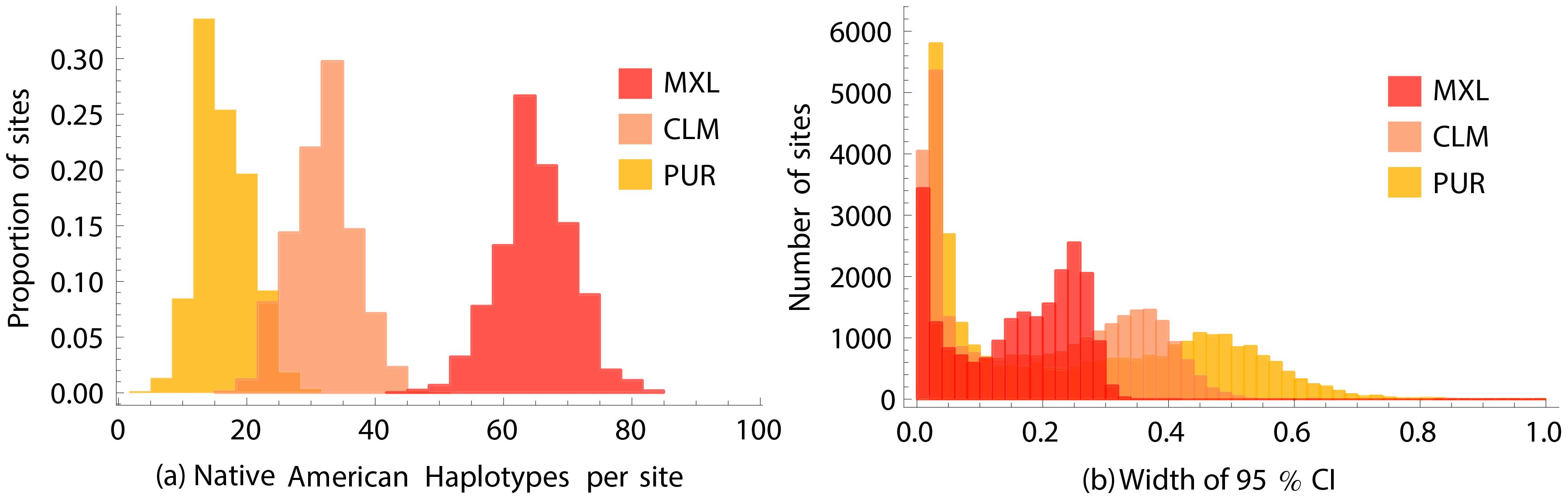 Estimating Native American allele frequencies.