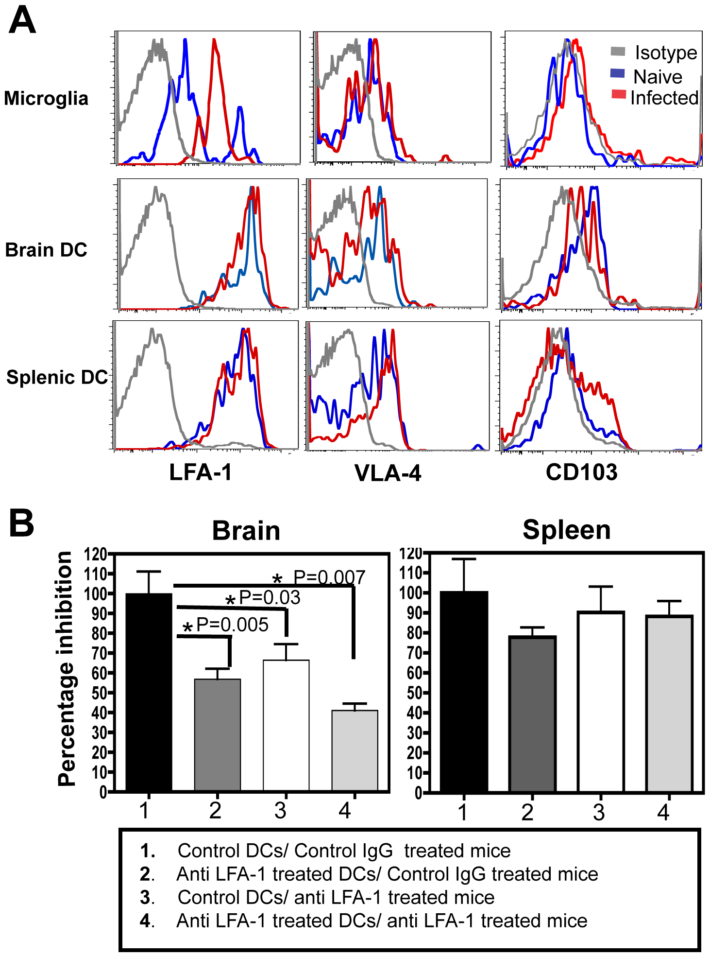 Migration of DCs into the brain is LFA-1 dependent.