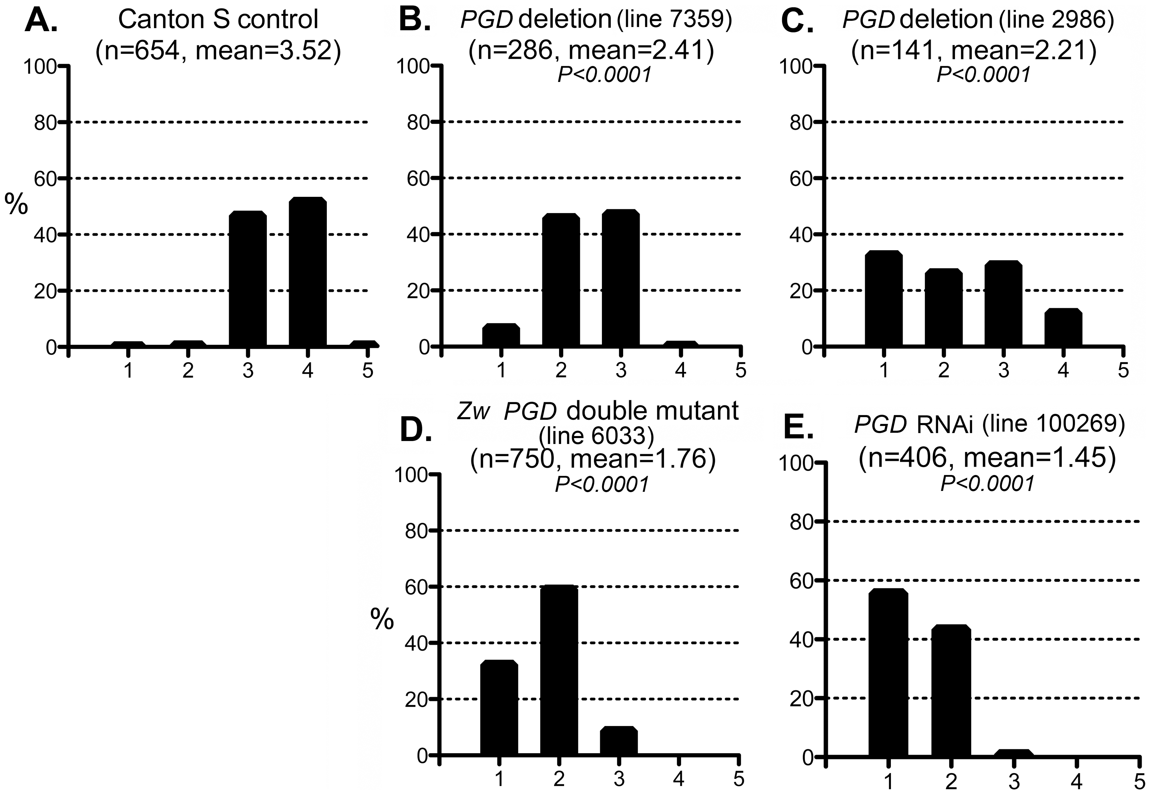 Effect of PGD reduction on the CryAB<sup>R120G</sup> phenotype.