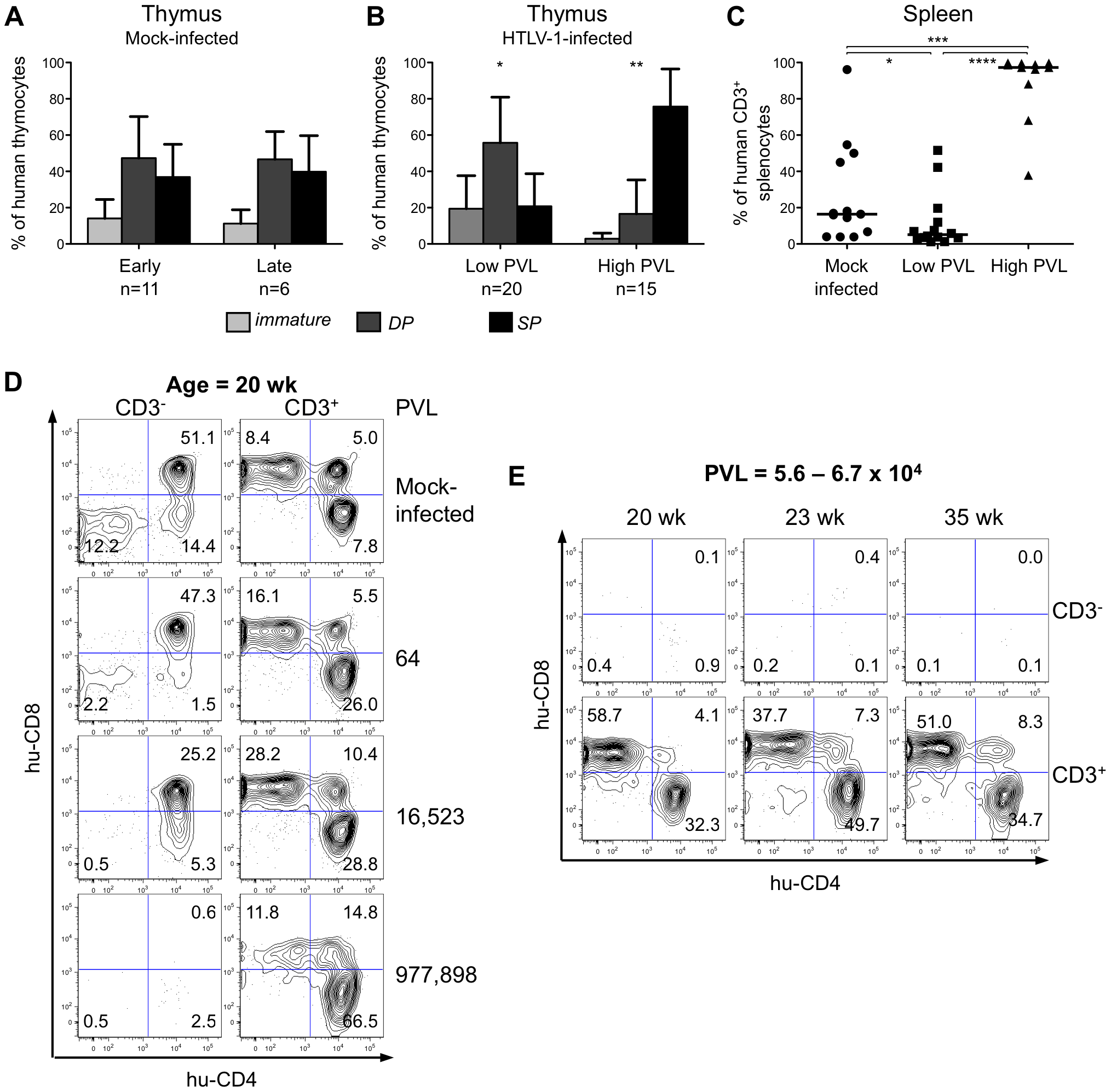 The human T-cell development is altered in HTLV-1-infected HIS Rag2<sup>-/-</sup>γ<sub>c</sub><sup>-/-</sup> mice.