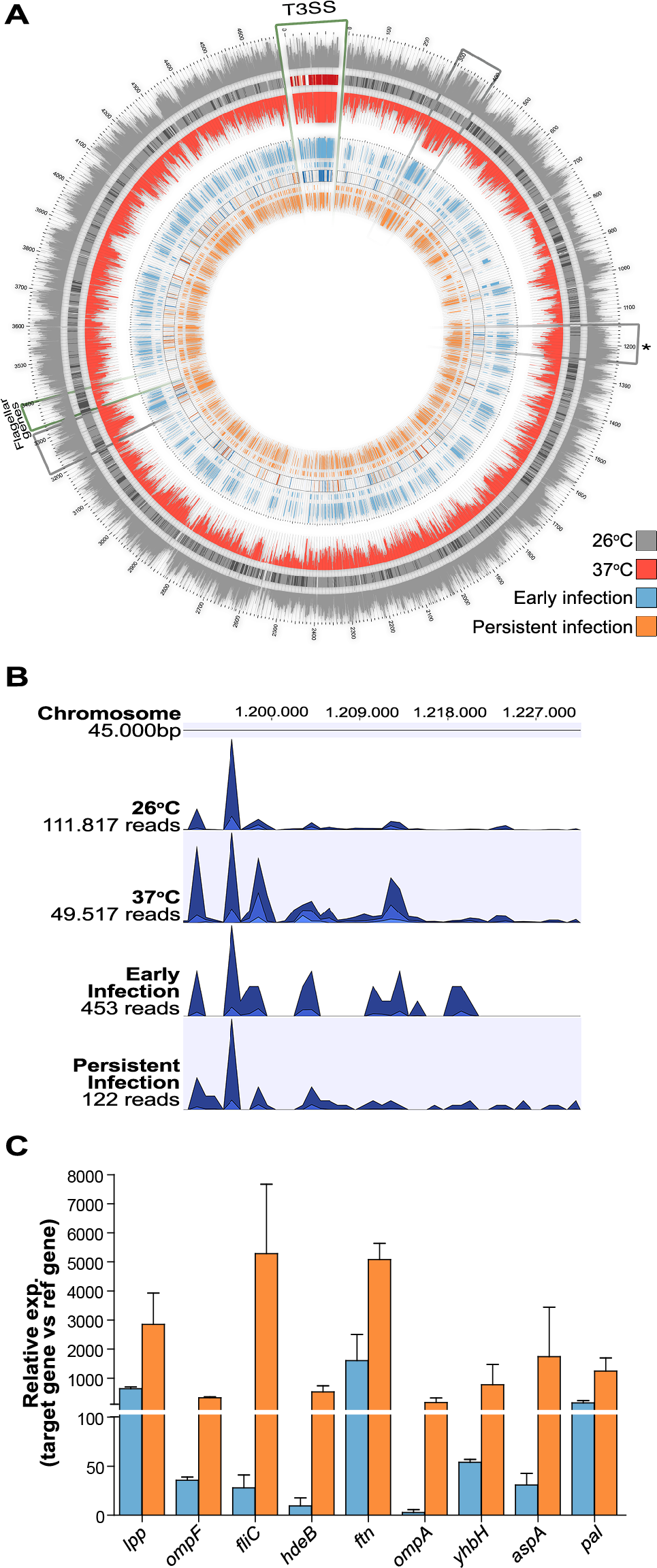 <i>In vivo Y. pseudotuberculosis</i> gene expression revealed by RNA-seq.
