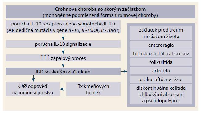Etiopatogenéza a klinické prejavy poruchy signalizácie dráhy IL-10. Fig. 3. Etiopathogenesis and clinical symptomatology associated with defective IL-10 signalling.