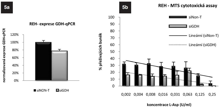 5a. Exprese genu pro GDH u linie REH po gradientovém umlčení tohoto genu metodou RNA-interference po 24 hodinách. 5b. Výsledek MTS cytotoxického testu REH buněk s gradientově umlčeným genem pro GDH.