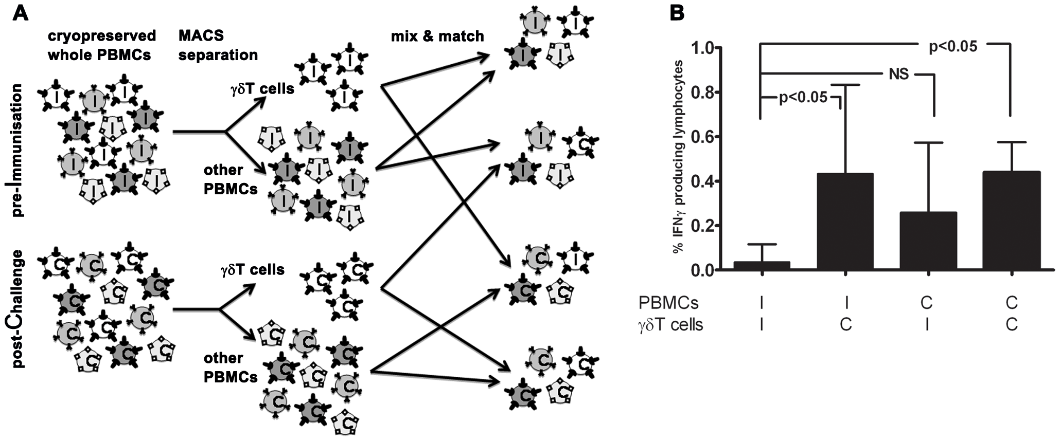 Immunological memory carriage by the γδT compartment vs other PBMC.