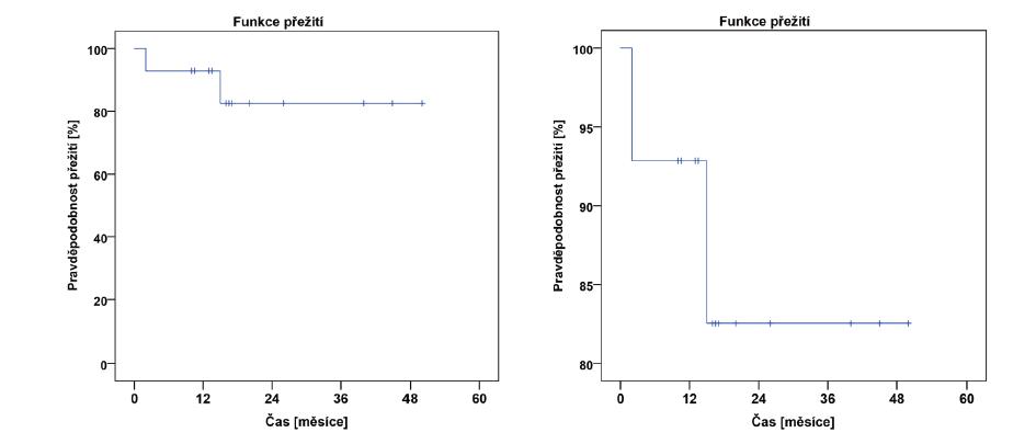 Znázornění poklesu pravděpodobnosti přežití u pacientů s leukémií v čase
