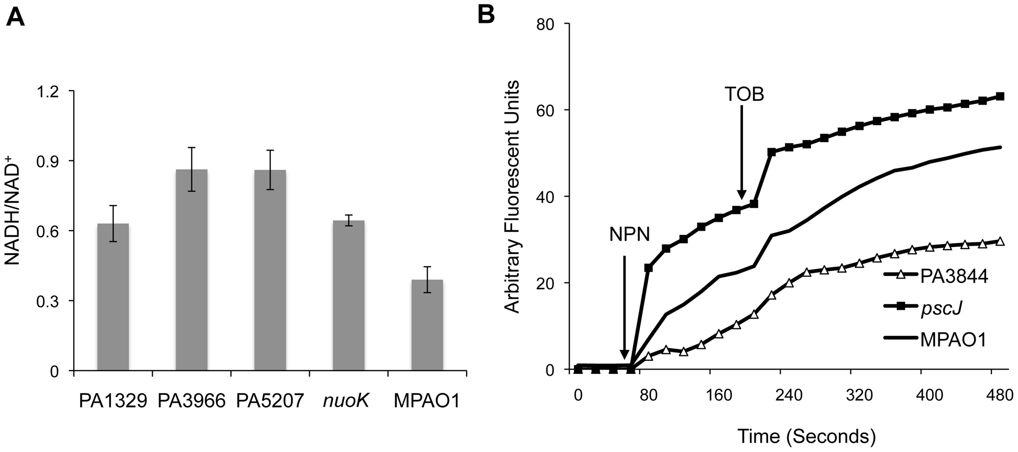 Functional classification of genes associated with antibiotic tolerance in biofilms.