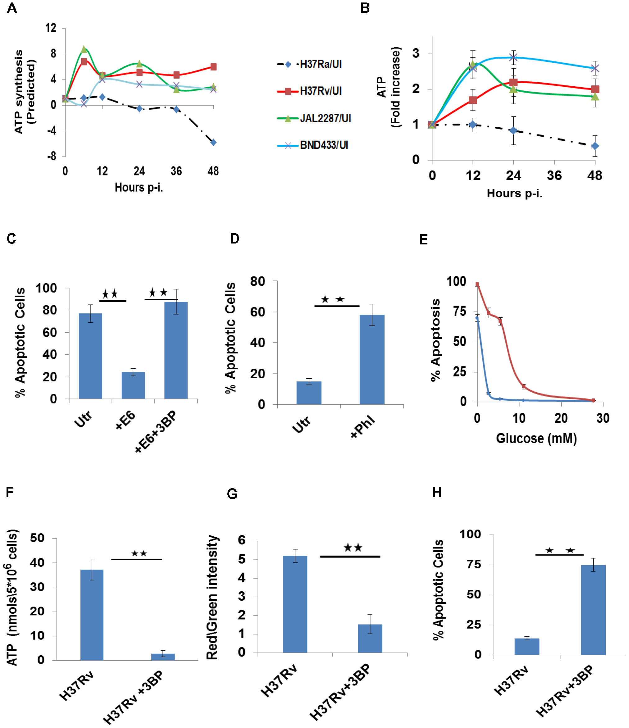 Perturbations in glycolytic flux control host cell death pathways.