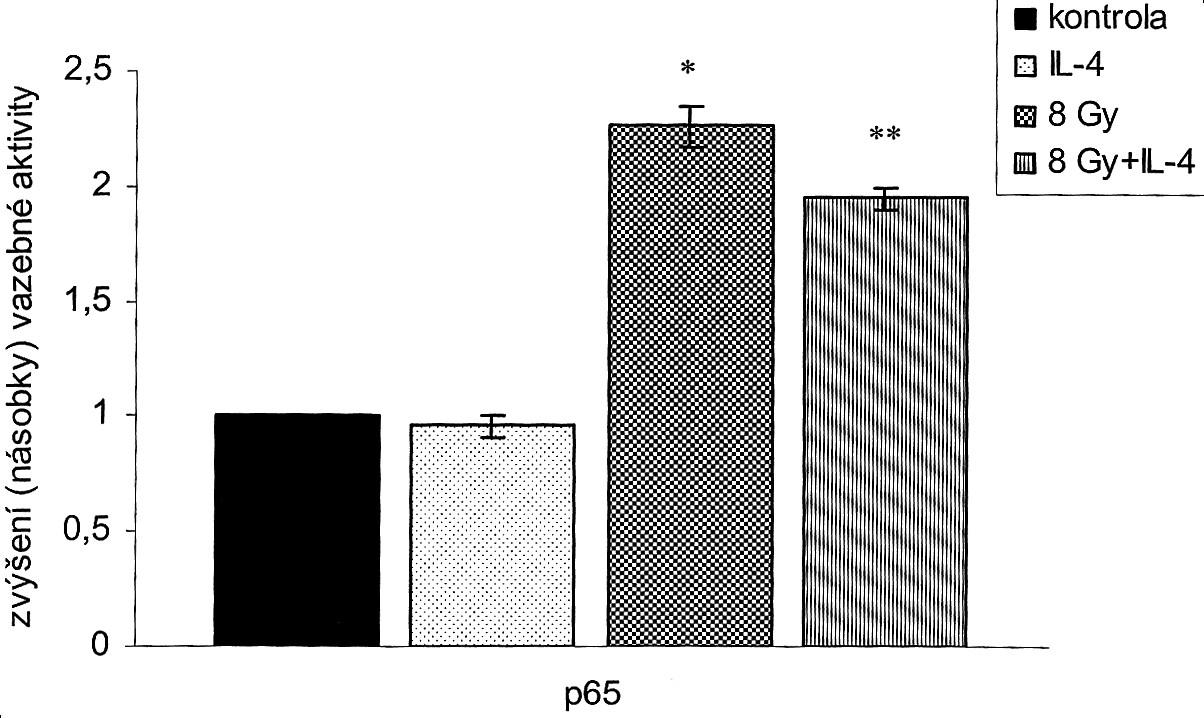 IL-4 (100 ng/ml) aktivaci p65 neovlivňuje. Dávka 8 Gy statisticky významně aktivuje p65 ve srovnání s kontrolní skupinou (*p<0,05). Míra této aktivace je statisticky významně tlumena IL-4 (**p<0,05: 8 Gy versus 8 Gy+IL-4). Pic. 3. IL-4 (100 ng/ml) on its own, without radiation, resulted in a moderate inhibition of the SW620 clonogenic cell growth, which was statistically insignificant. However, when combined with radiation, IL-4 had a statistically significant inhibition potentiation effect on the radiation-induced clonogenic growth: at the dose of 2 Gy , IL-4 reduced the clonogenic growth potential cell fraction from 0.75 0,04 down to 0.51 0,05 and at the dose of 4 Gy from 0.45 0.02 down to 0.27 0.04. (*p<0.05: 2 Gy versus 2 Gy+IL-4; **p<0,05: 4 Gy versus 4 Gy+IL-4).