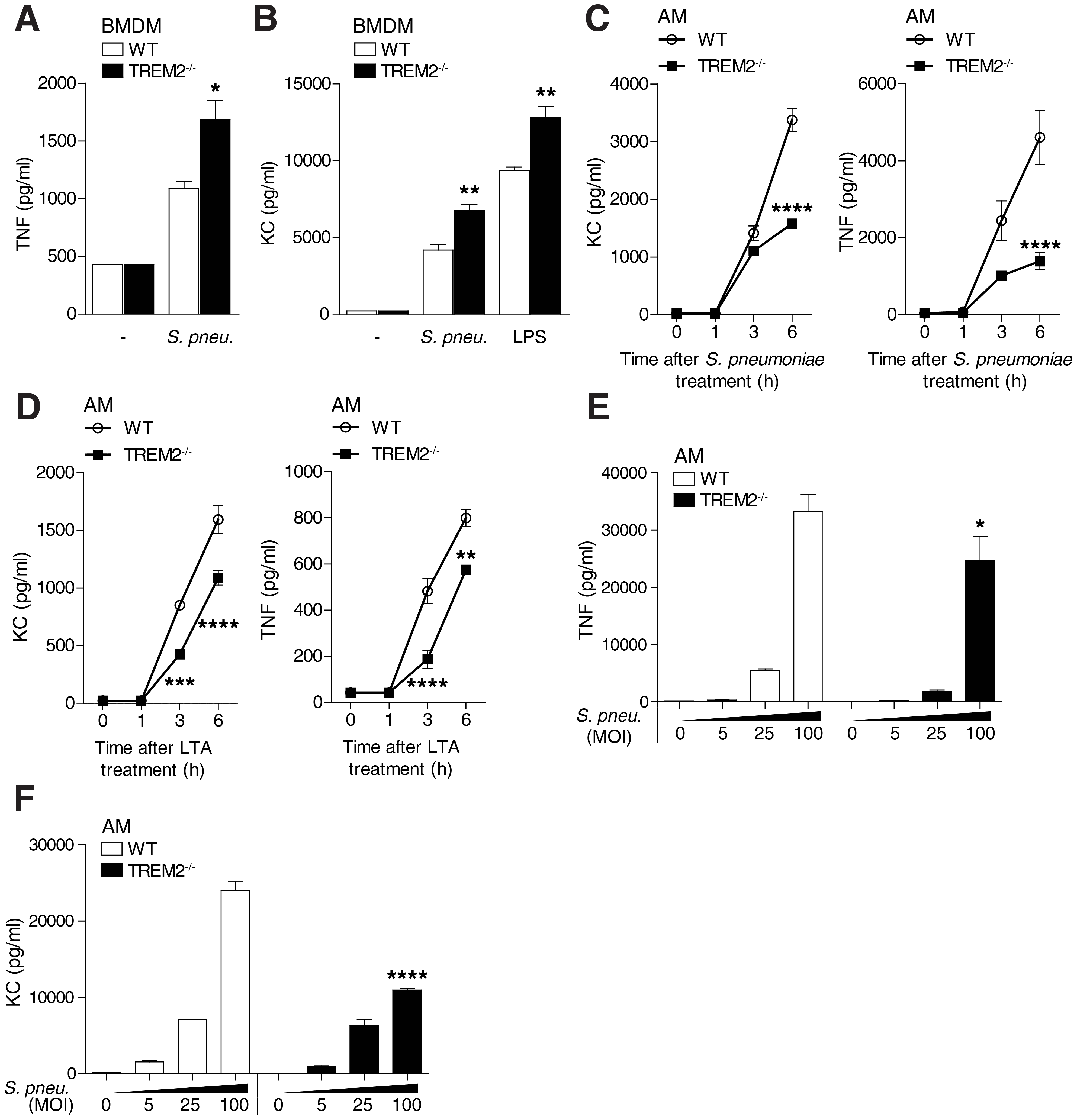 Cell type specific effects of TREM-2 on <i>S. pneumoniae</i> and TLR2 mediated cytokine production.