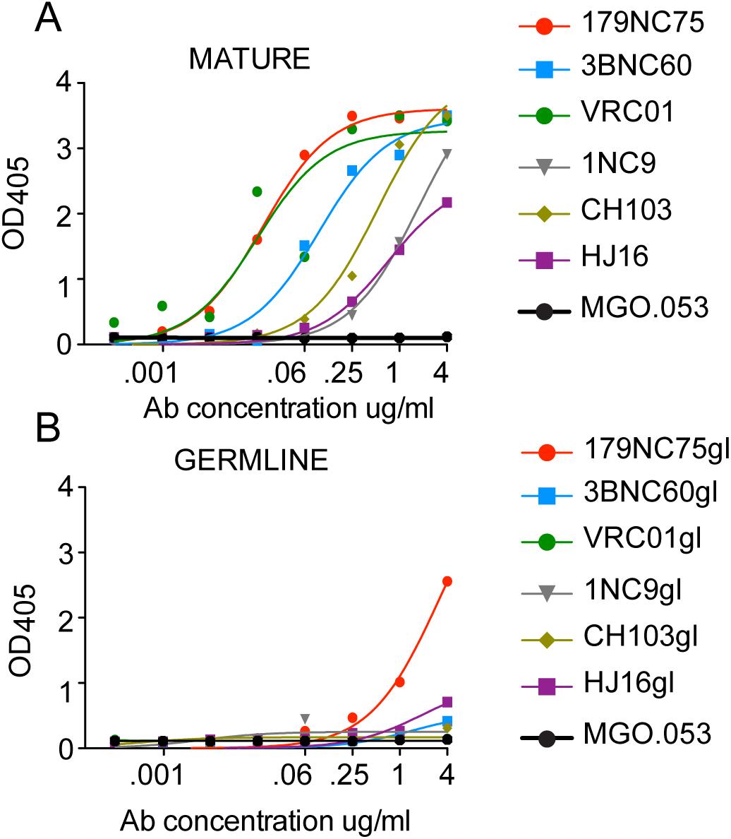 Mature <i>versus</i> predicted germline antibody binding to BG505 SOSIP.664-D7324 trimers in ELISA.