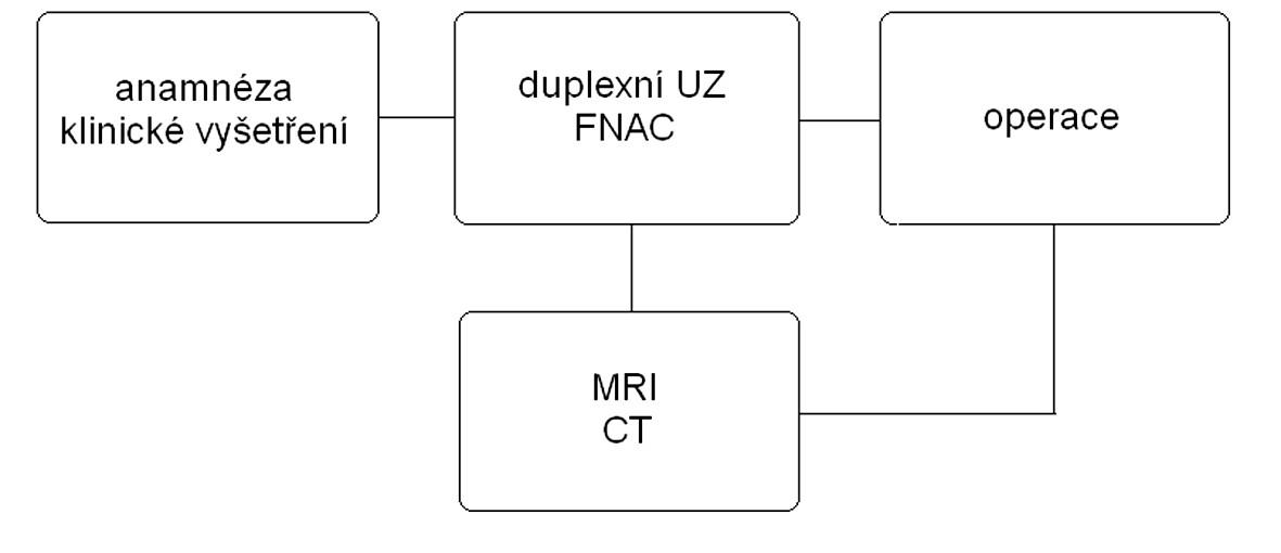 Schéma. 1. Algoritmus vyšetření nádorů velkých slinných žláz.