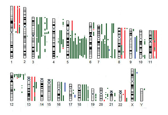Schematické znázornění nebalancovaných změn nalezených u pacientů s UPD (uniparentální disomií) 17p metodou aCGH/SNP