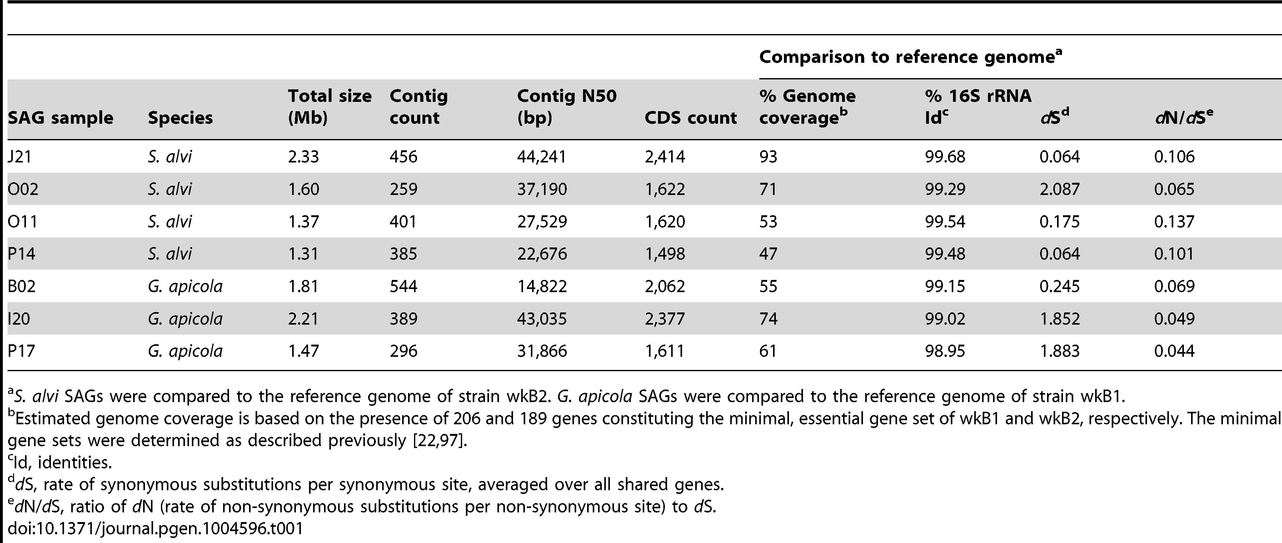Genome features of SAGs and comparisons to their reference genome.
