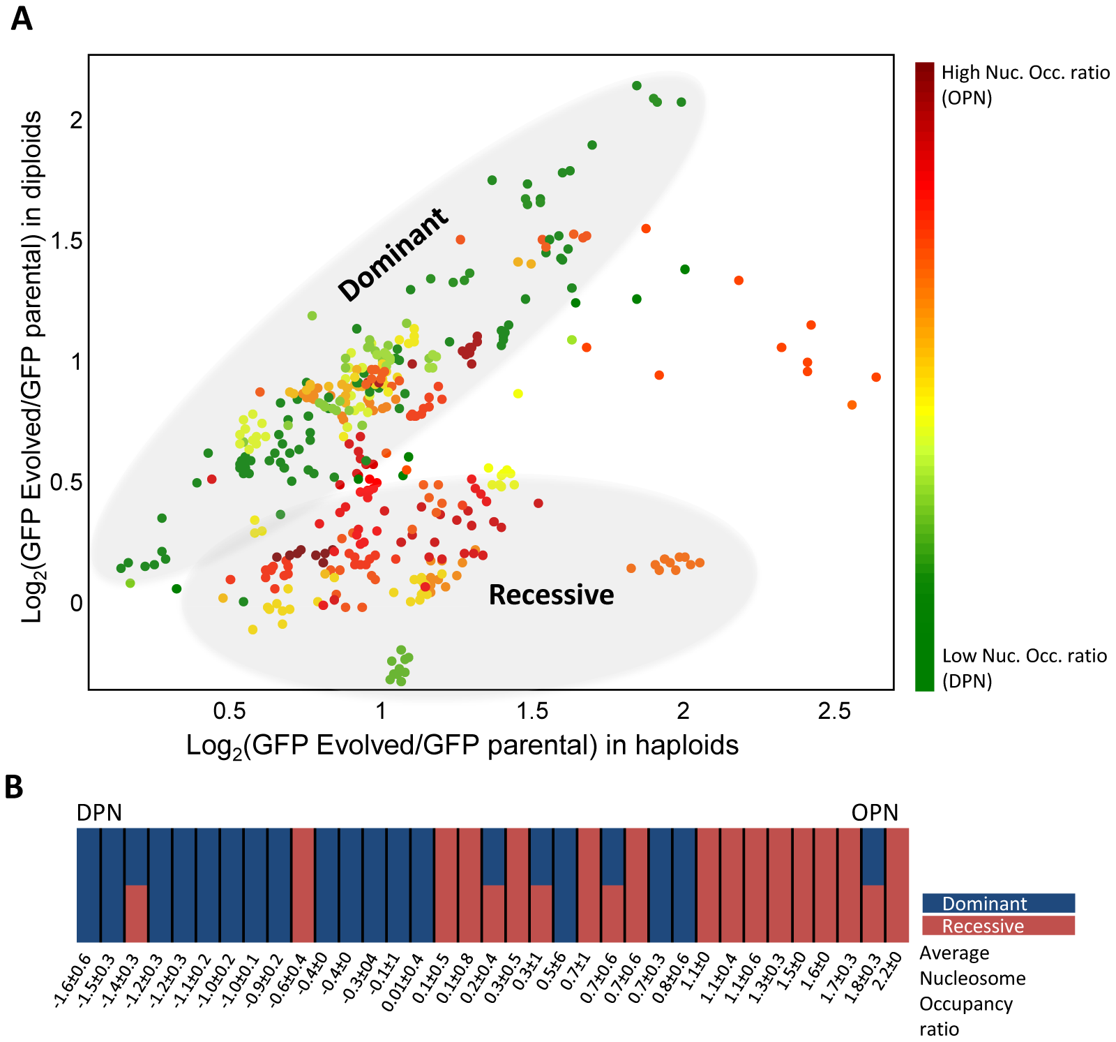 Genomic changes correlate with the gene promoter structure.
