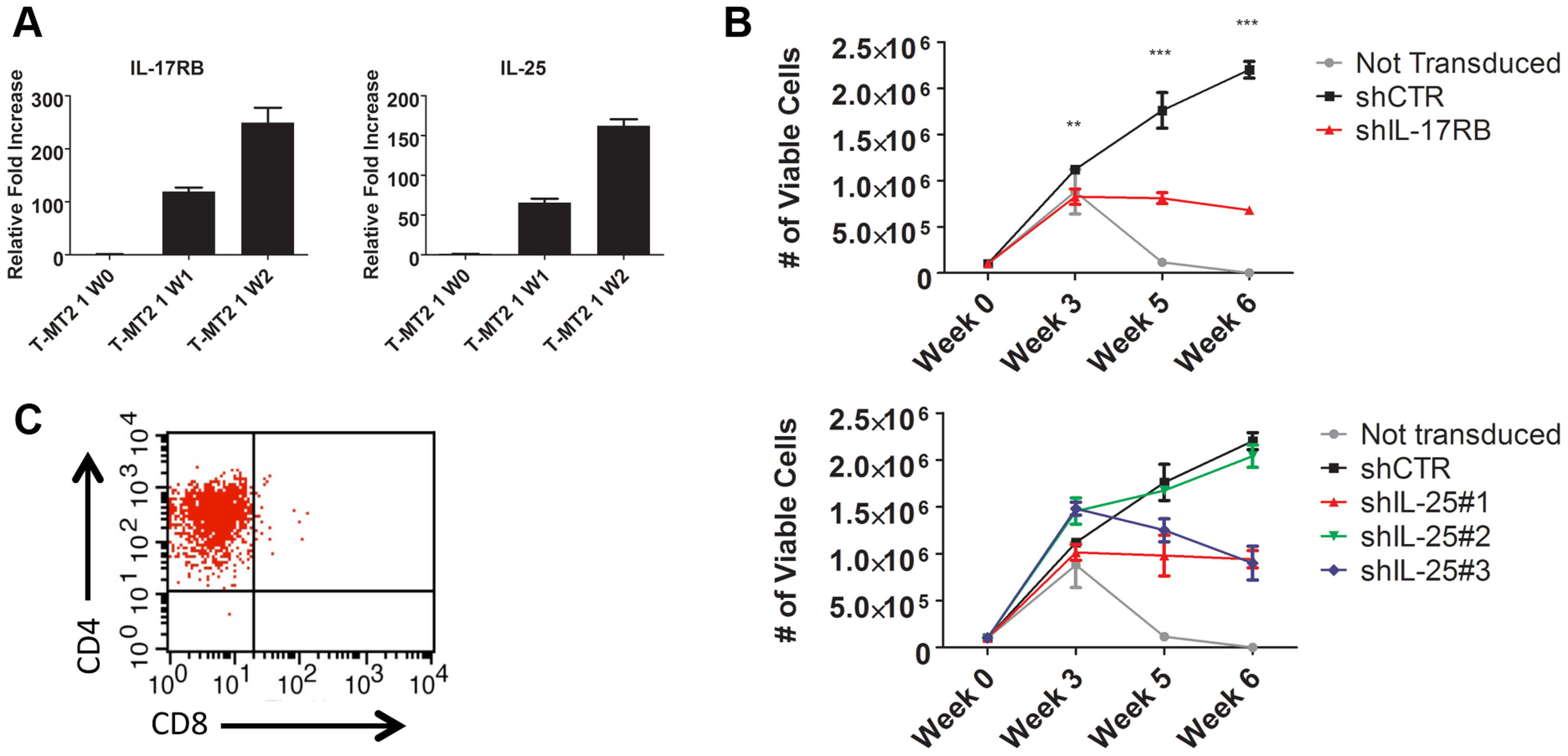 IL-17RB and IL-25 are essential for the HTLV-1-induced immortalization of T cells.