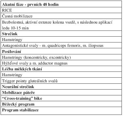Management léčby zranění hamstringů podle Brukner a Khan (6).