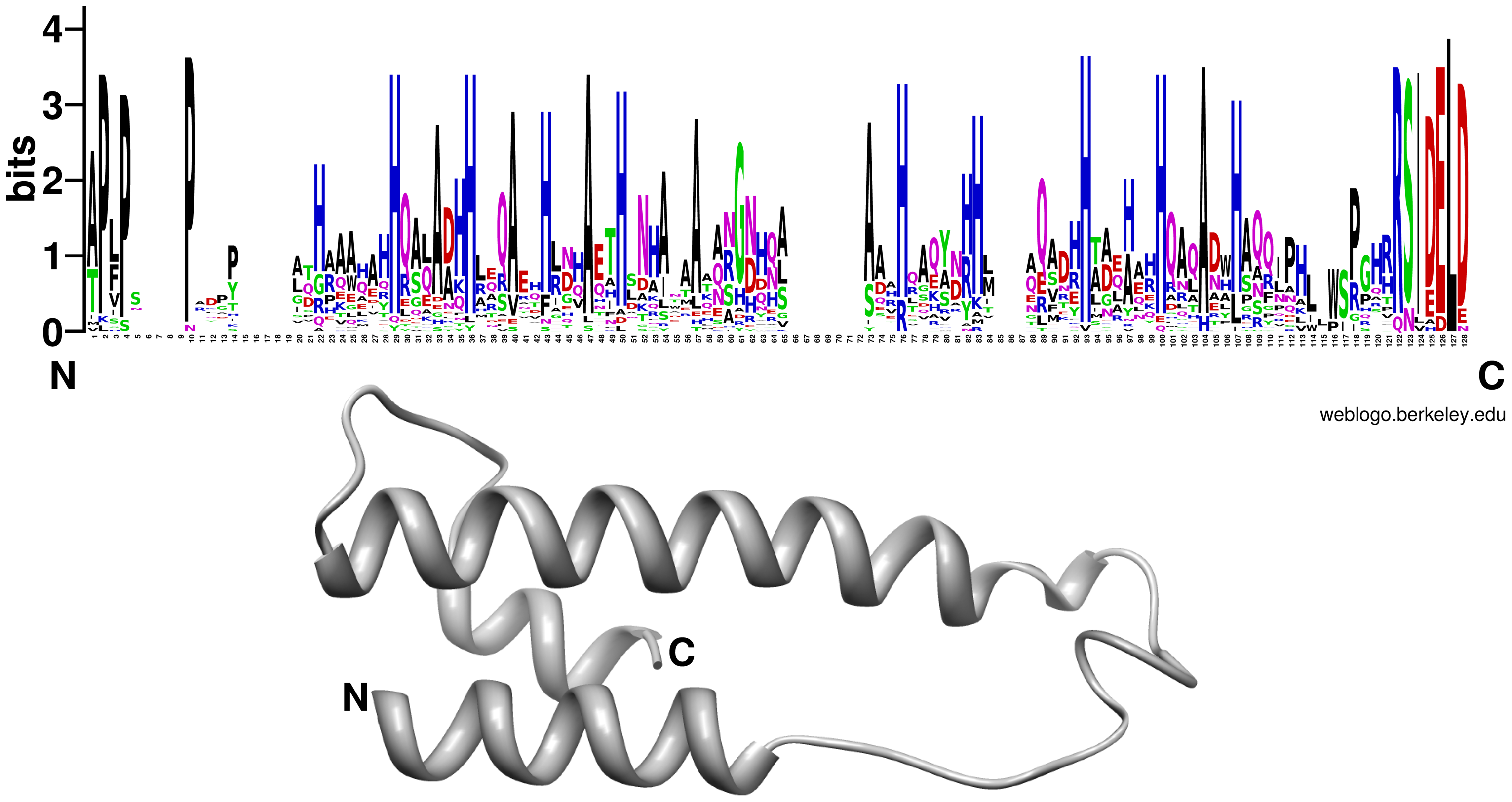 Conserved residues positions and schematic representation of the <i>P. indica</i> DELD protein structure.