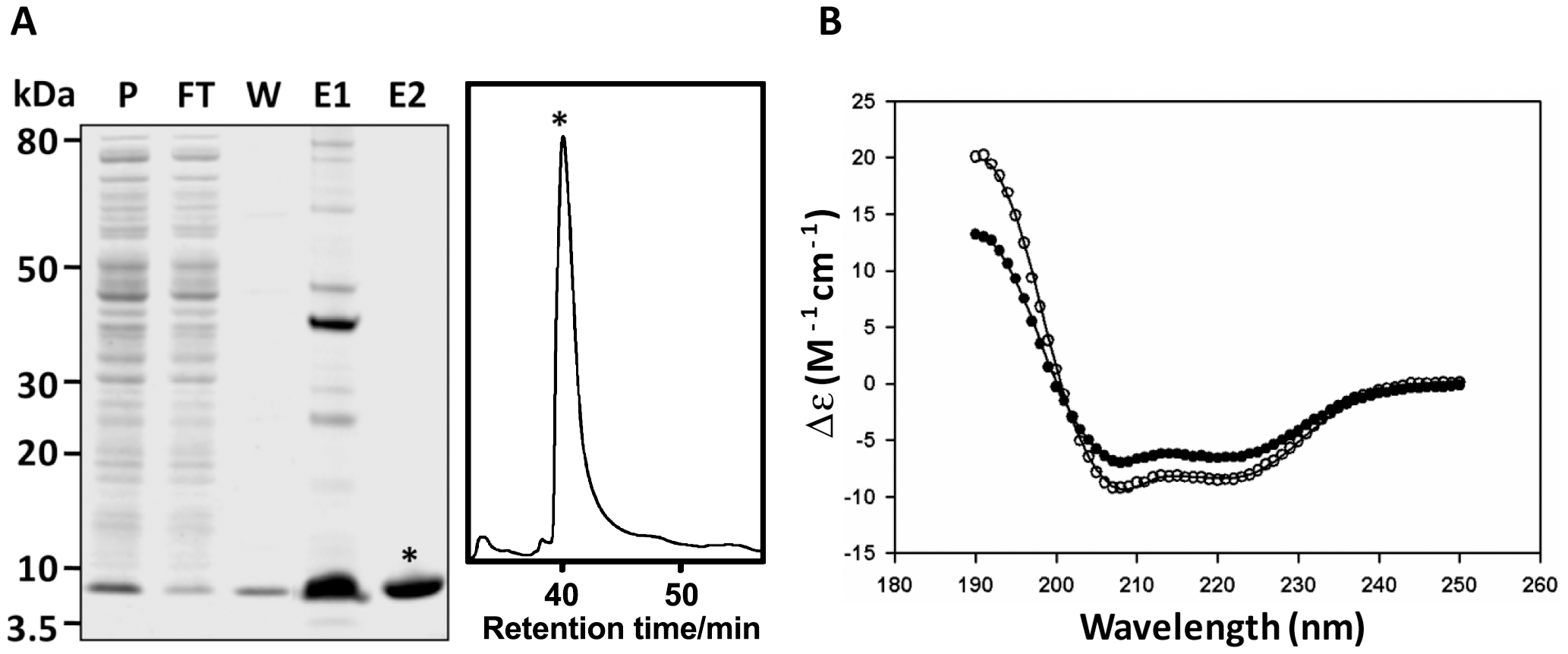 Expression and CD spectroscopy of recombinant FhHDM-1.
