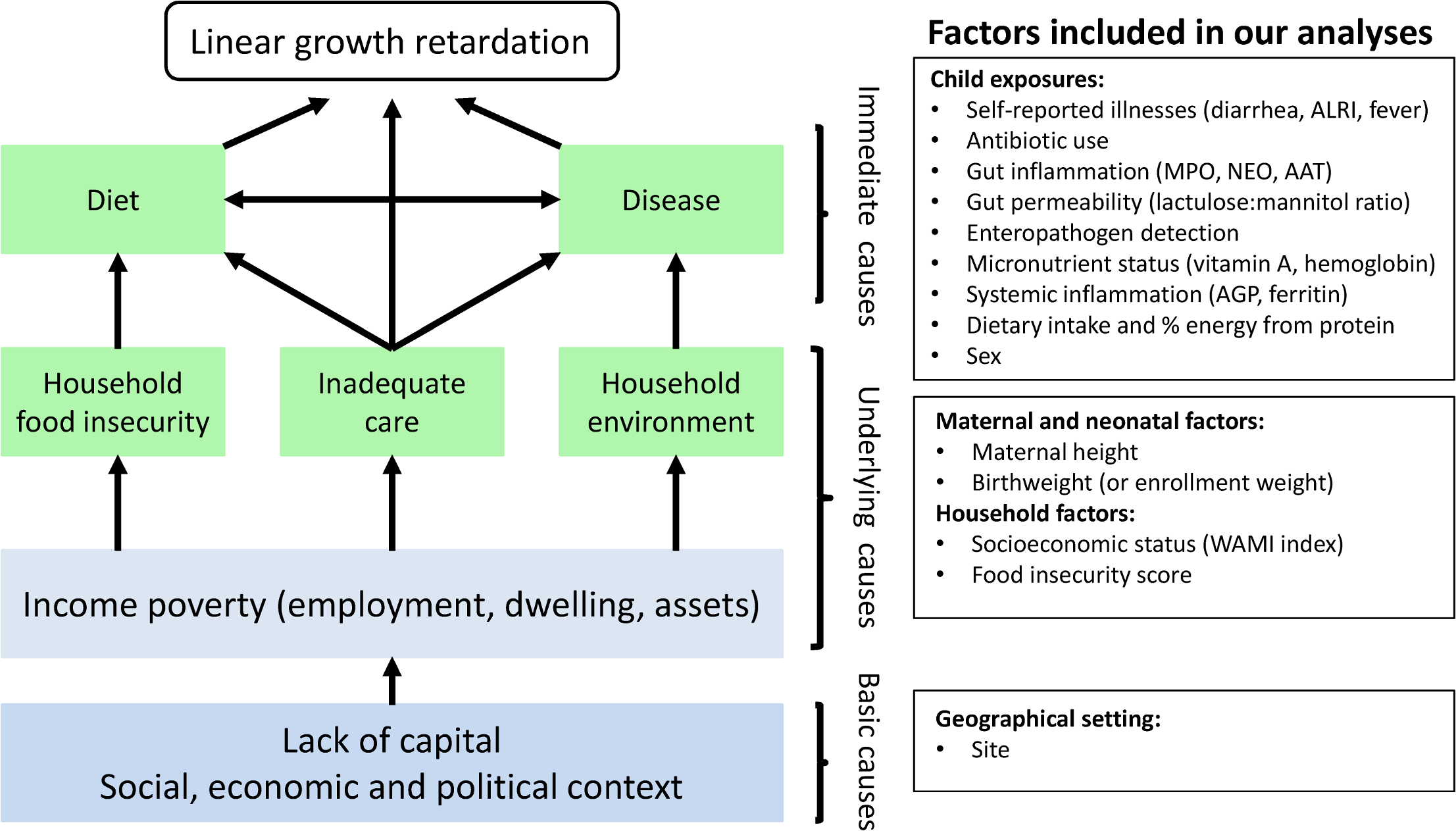 Modified version of the UNICEF malnutrition conceptual hierarchical framework and the maternal and household factors and childhood environmental exposures included in our analyses.