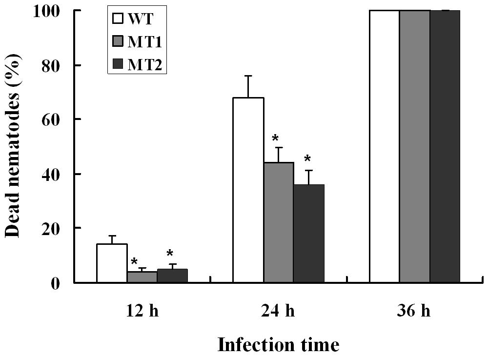 Disruption of the gene <i>p186</i> and nematocidal activity analysis.