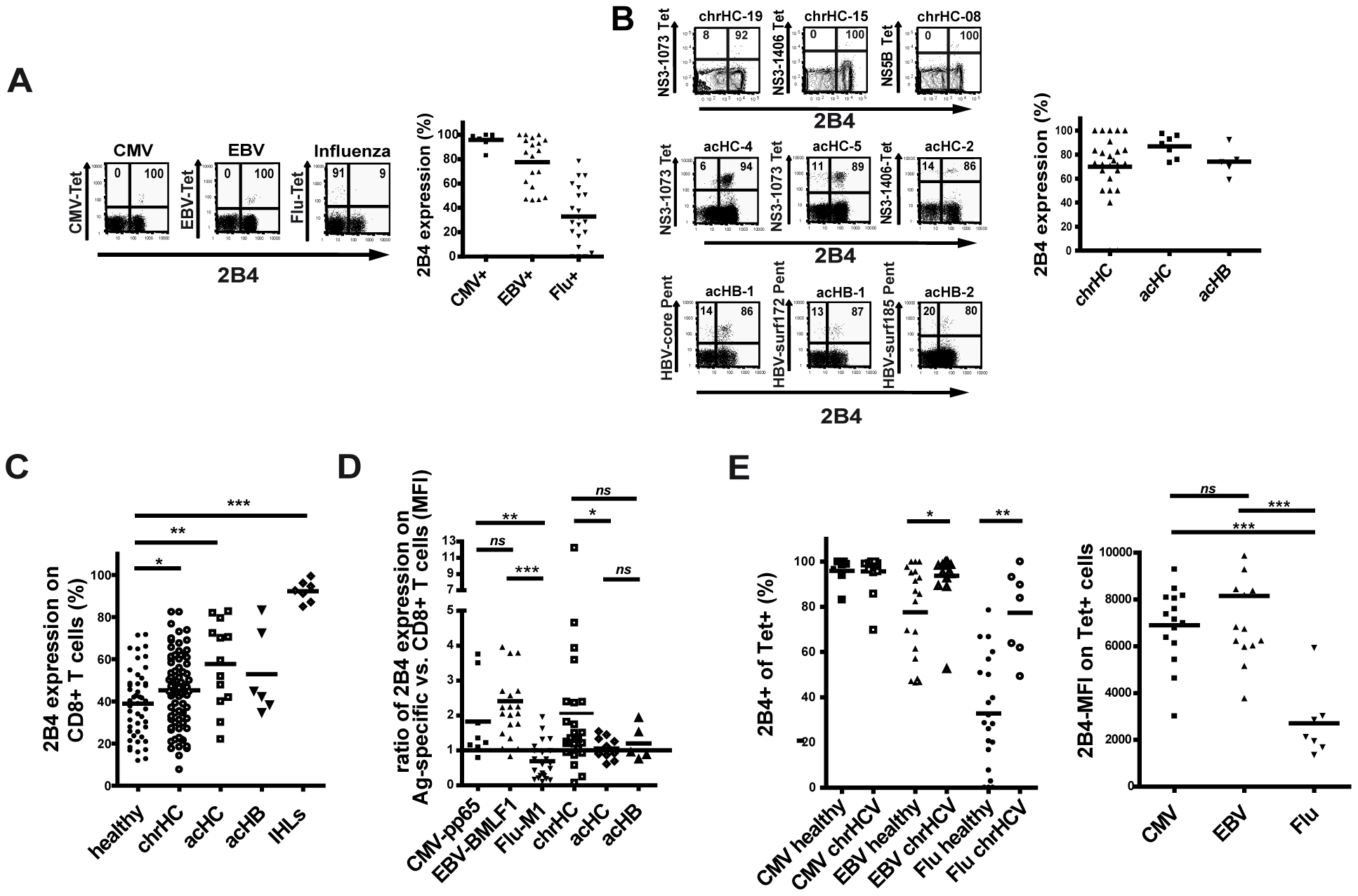 2B4 expression on virus-specific and bulk CD8+ T cells.