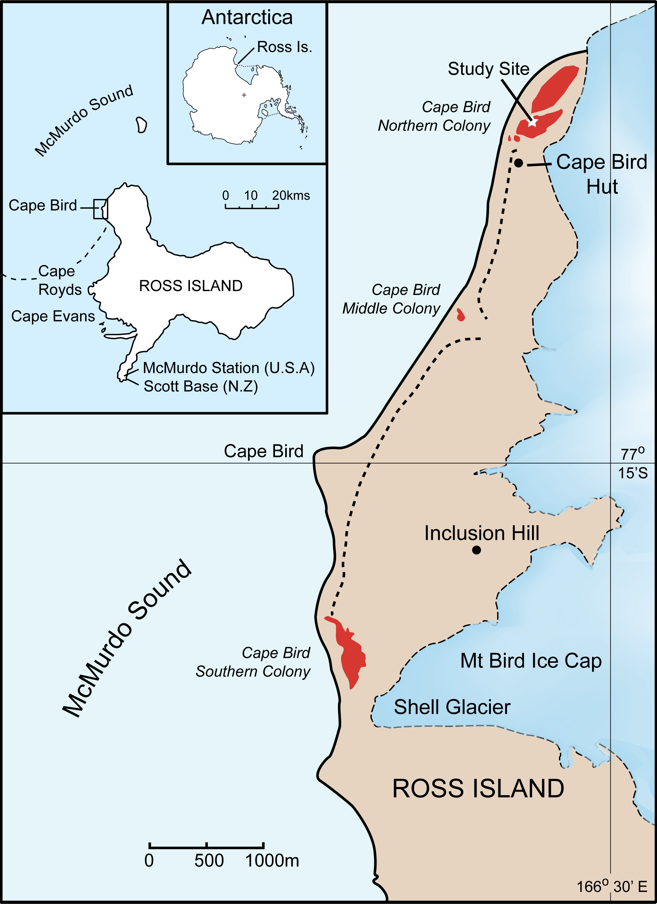 Location of the study site at Cape Bird, Ross Island, Antarctica.