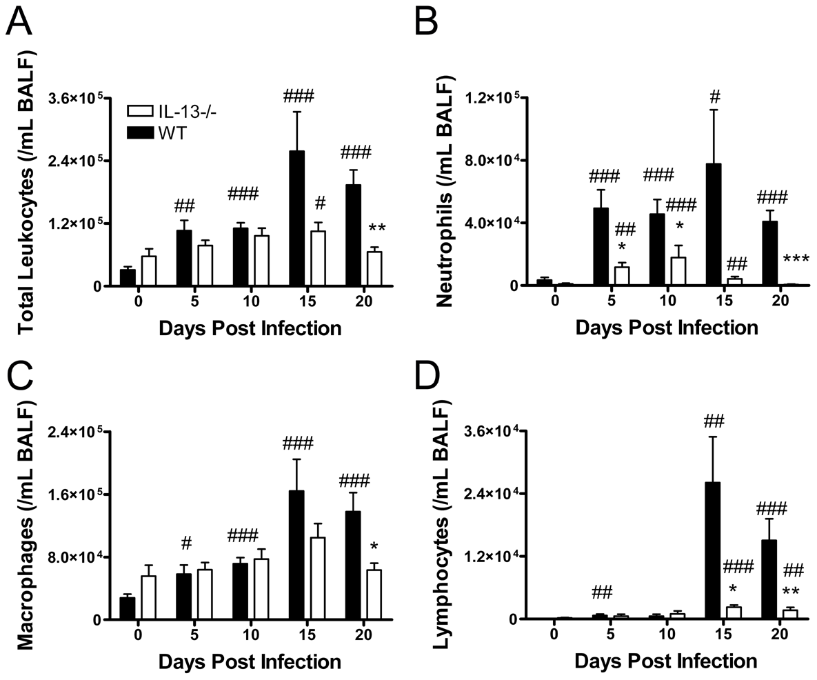 IL-13 deficiency reduces airway inflammation during <i>Chlamydia muridarum</i> (<i>Cmu</i>) lung infection.