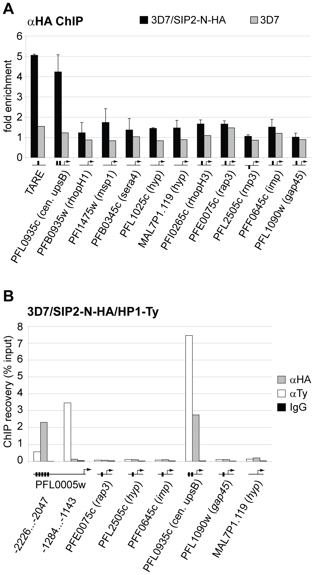 PfSIP2-N-HA binds exclusively to SPE2 elements located in heterochromatic TARE2/3 and upsB <i>var</i> gene domains.
