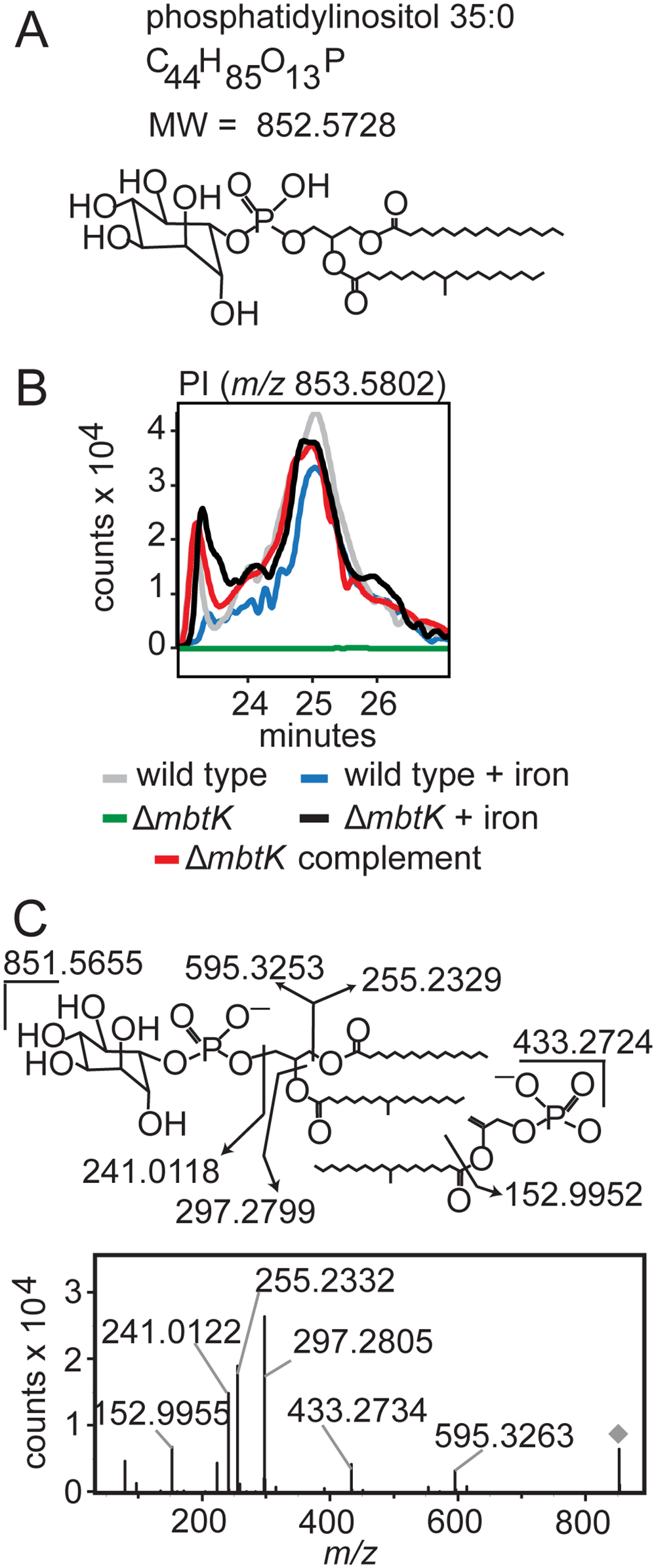 <i>mbtK</i> deletion depletes phosphatidylinositol during iron starvation.