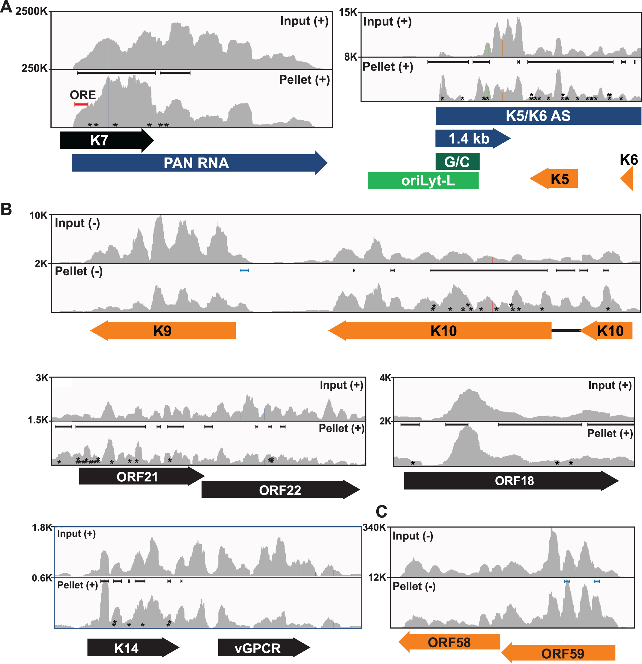 Sequence reads across various viral genomic loci.