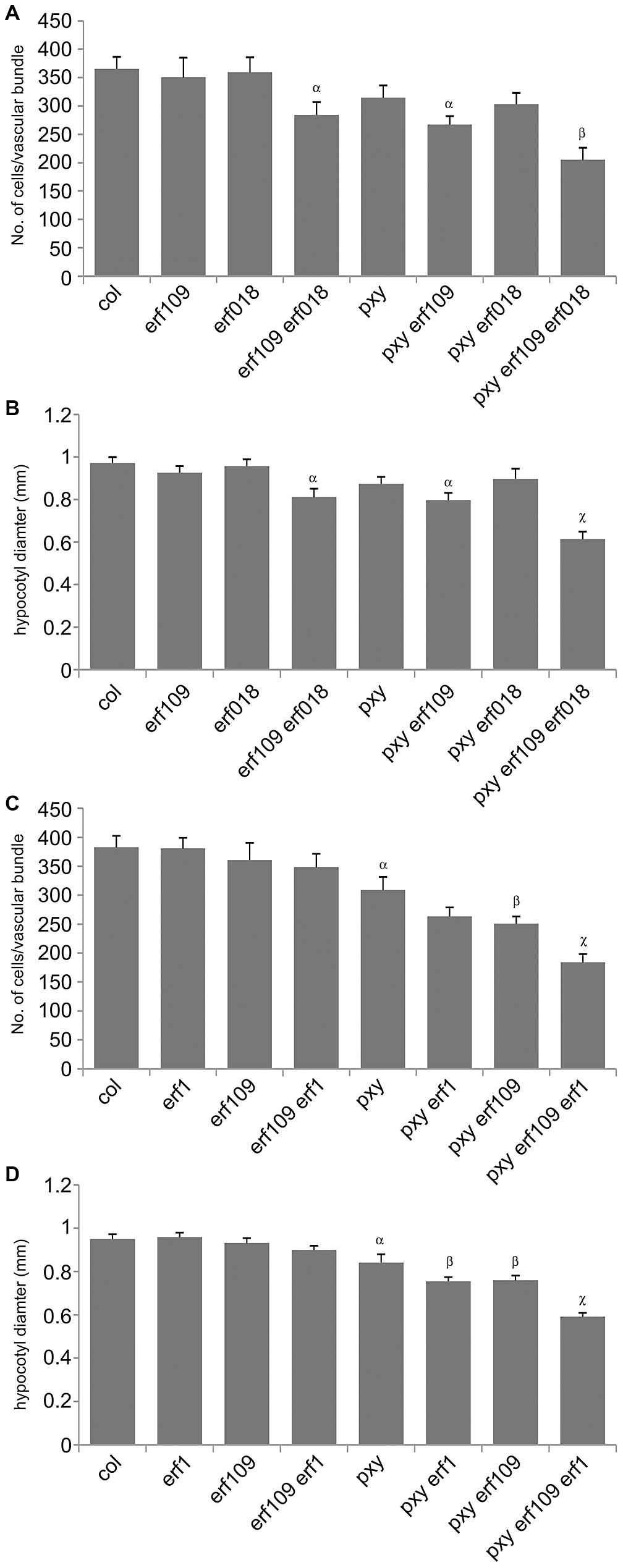 Quantitative analysis of vascular cell division in <i>erf109</i>, <i>erf018</i>, <i>erf1</i>, and <i>pxy</i> mutant combinations.