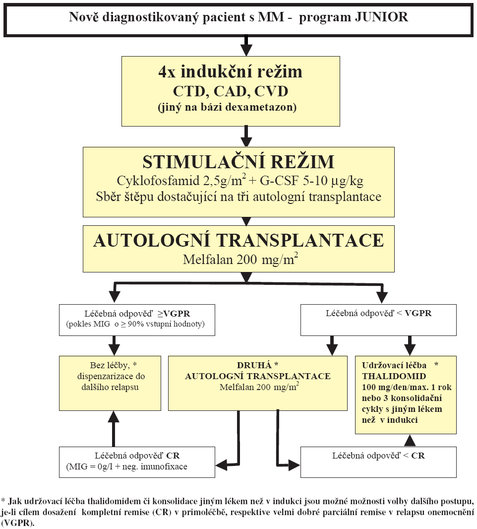 Schéma 1. Léčba mnohočetného myelomu pro pacienty do 65 let – primoléčba.
