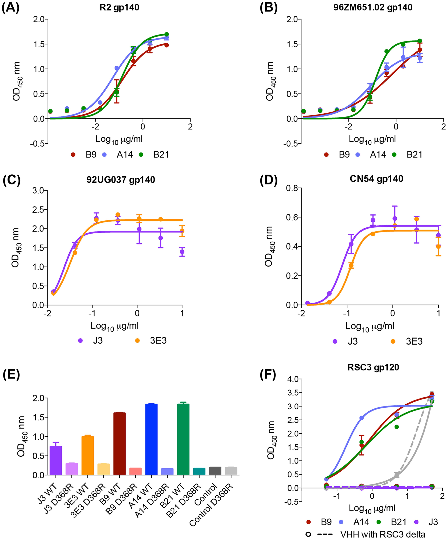 A14, B9, B21 binding to HIV ENV.