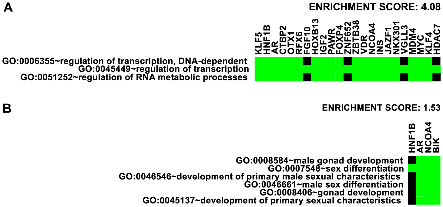 Enrichment of Gene Ontology.