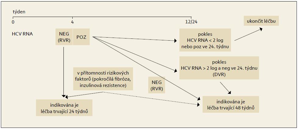 Léčba vedená podle dosažené virologické odpovědi během terapie, genotypy HCV 2 + 3. Fig. 7. Treatment administered based on the achieved virological response during the therapy, HCV 2 + 3 genotypes.