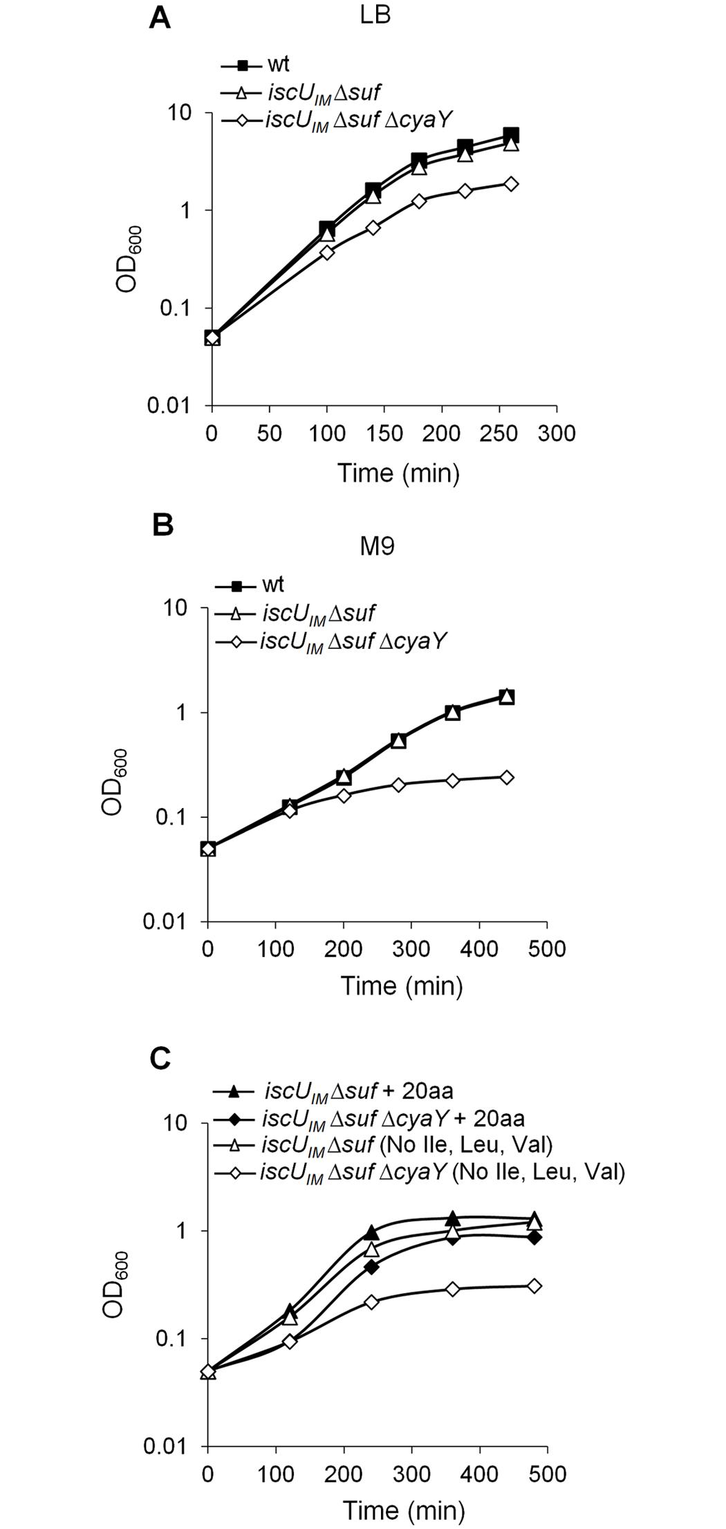 The <i>iscU</i><sub><i>IM</i></sub> Δ<i>suf</i> Δ<i>cyaY</i> strain exhibits growth defect.