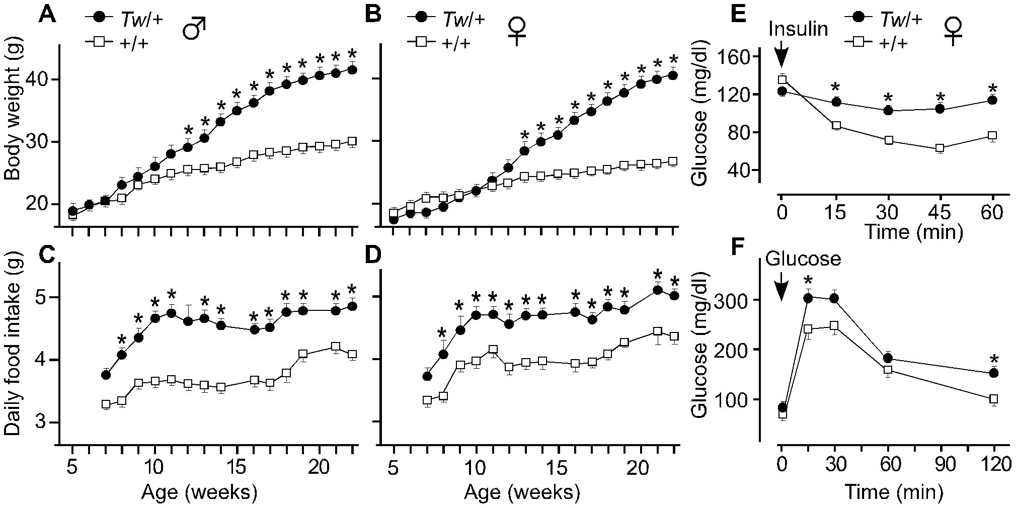 Body weight, daily food intake, and insulin and glucose tolerance of Twirler mice.