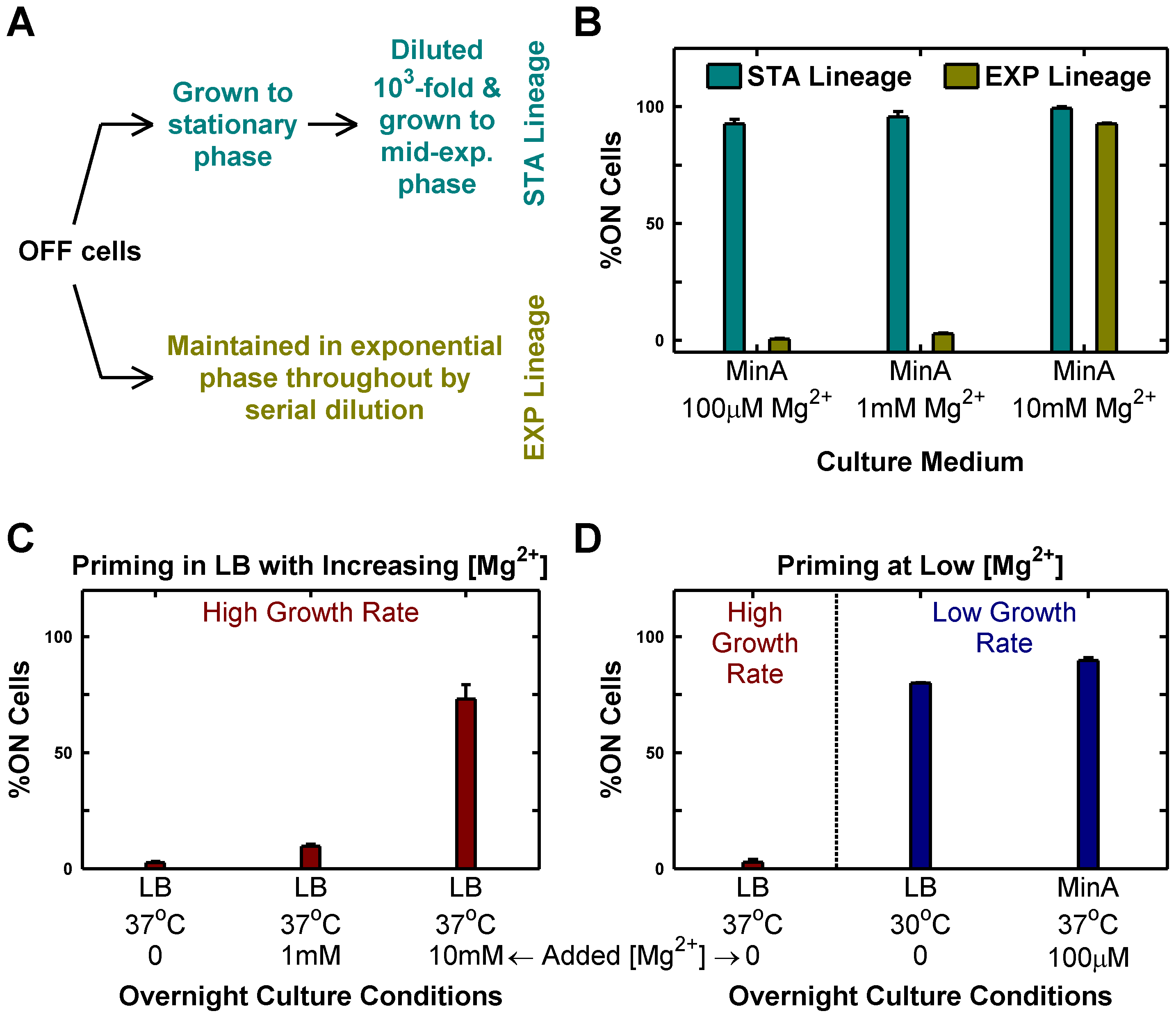 Passage through stationary phase and High Mg<sup>2+</sup> cause OFF cells to prime to ON state.